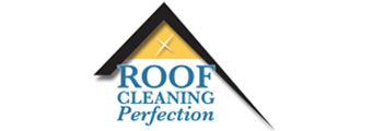 Roof Cleaning Perfection